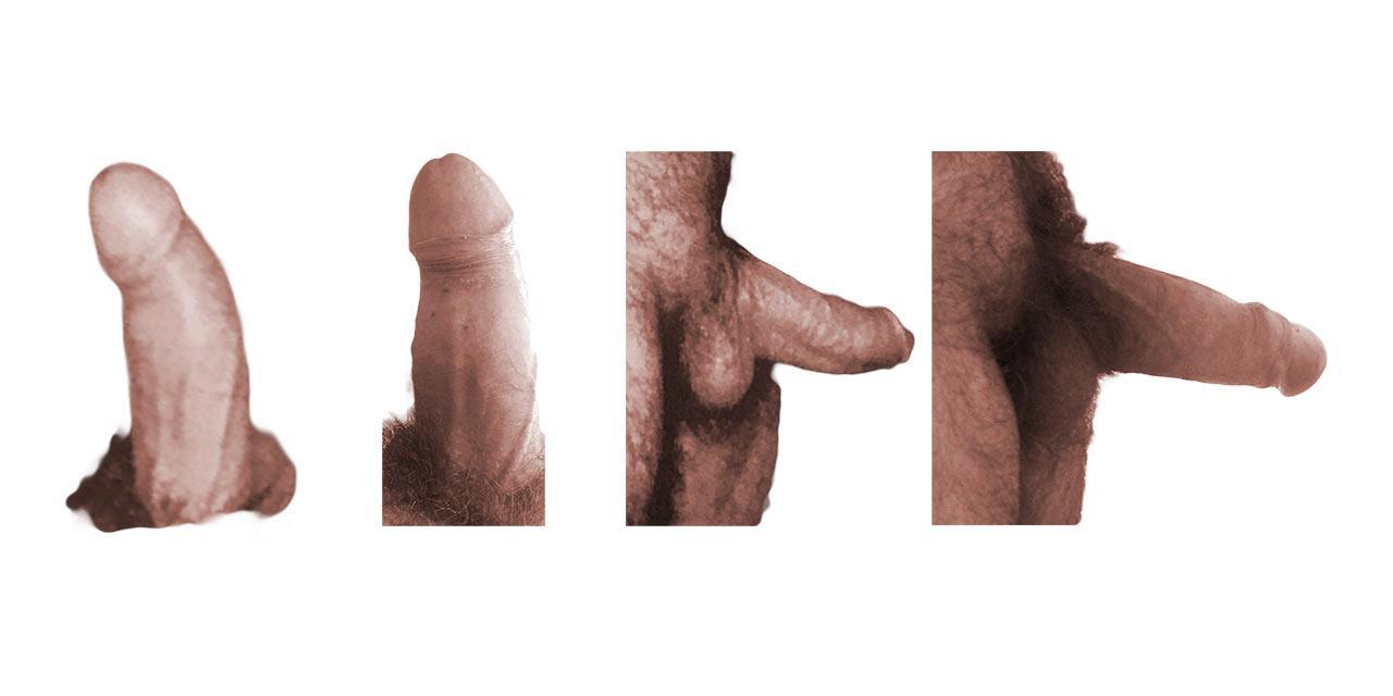 fig12.jpg